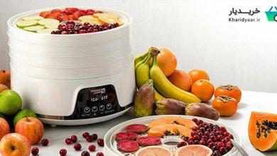 بهترین مارک میوه خشک کن خانگی